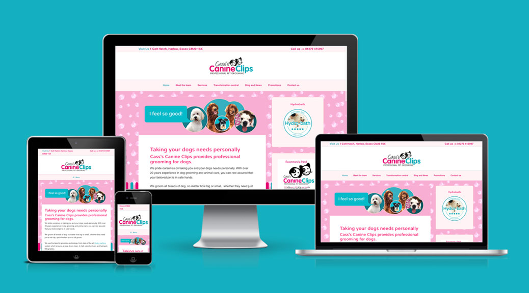 Pet Grooming Business Website Design